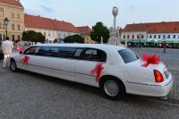 Lincoln Towncar Strechlimo
