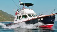 WILBUR 34 FLYBRIDGE BIG GAME S POVLASTICOM IDEALAN ZA FISHING CHARTERS