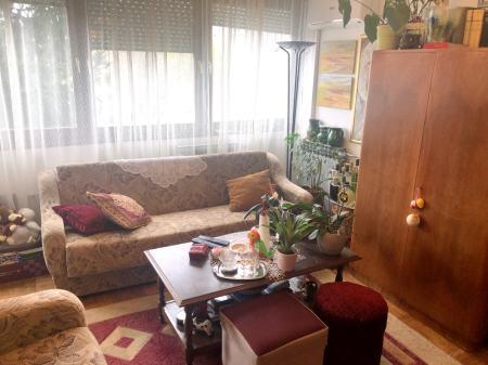 Lijepi stan (45 m2) na odličnoj lokaciji, dvosobni, Špansko
