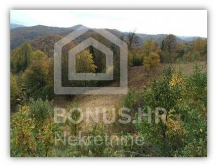 Prodaja - Zemljište 11888 m2 - Vrhovčak -  Samobor