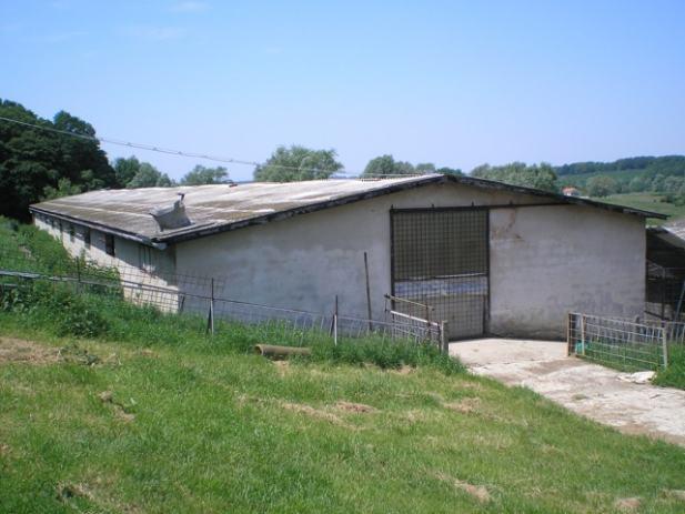 Svinjogojske farme leme kri eva ki 1000 m2 iznajmljivanje for Gartengestaltung 1000 m2