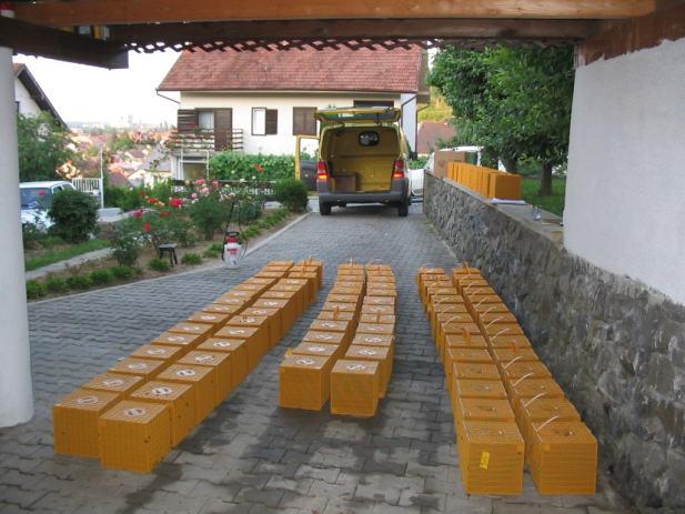paketne p u010dele u multiboxu ili kartonu sa selekcioniranom