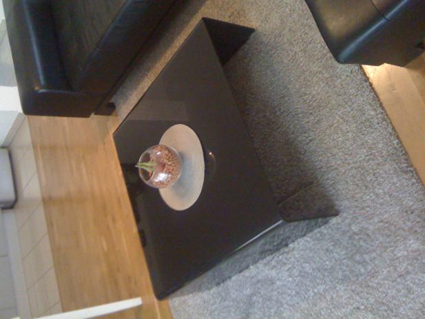 POKLANJAM - Stol za dnevnu sobu