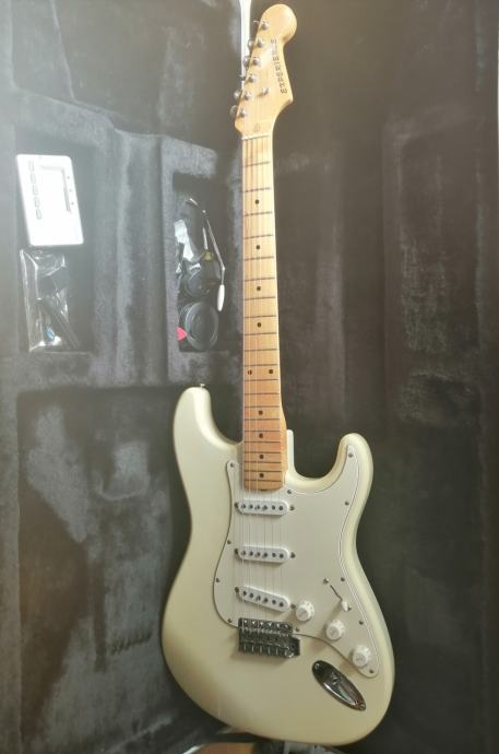 Cats Stratocaster 6 strings - Washburn Acoustic 12 strings