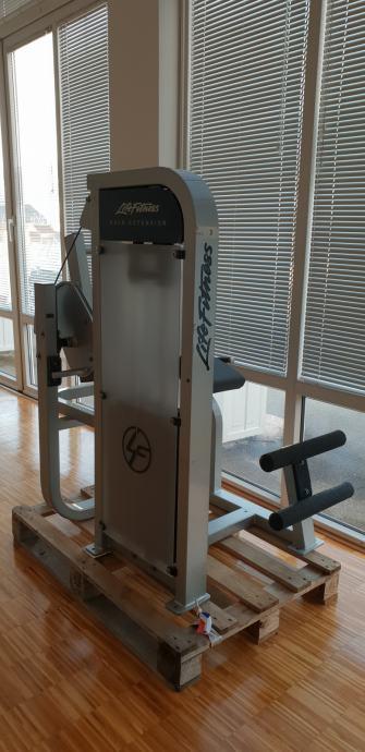 Life Fitness Back Extension - cijena sa PDV-om