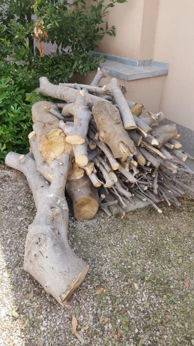 Drva za ogrijev, otok Vir