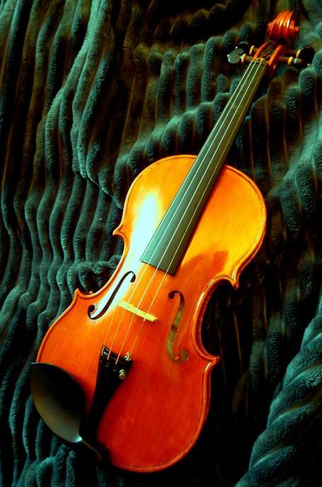 Velemajstorska violina