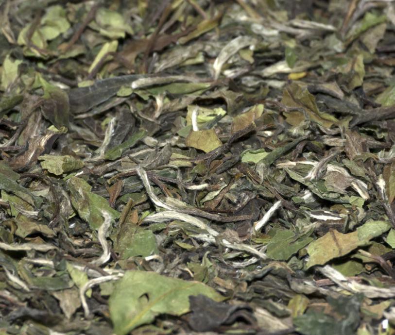 Bijeli čaj Pai Mu Tan 50g