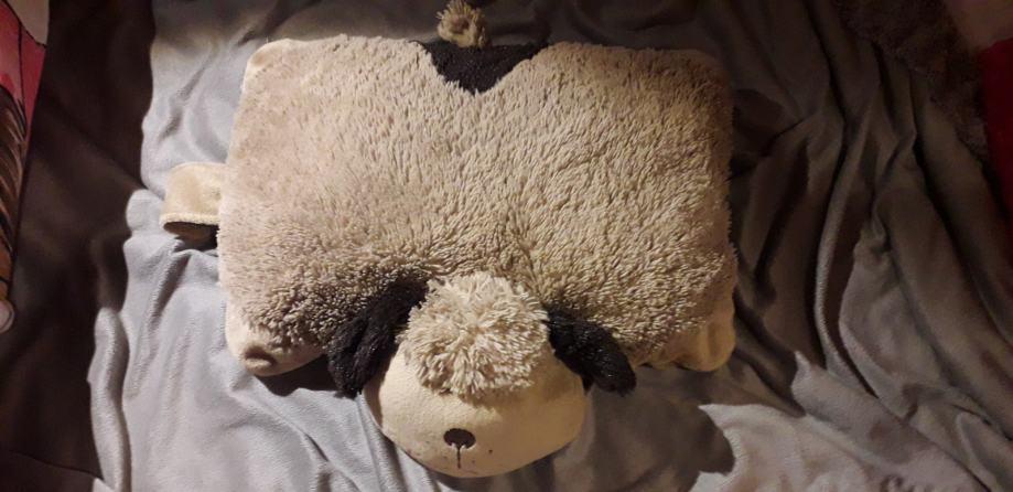 Jastuk pas pillow