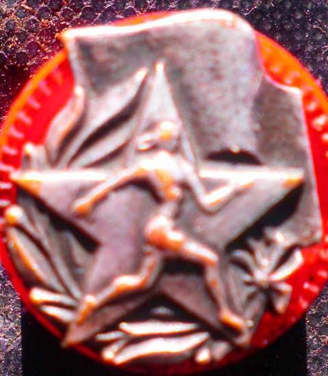 Metalna oznaka Fiskulturnik