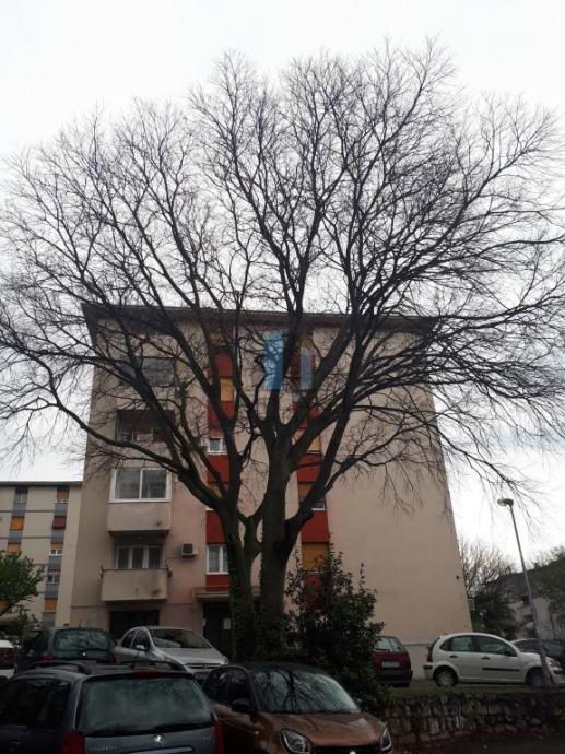 D.Vežica, 50m2, 2SKL, balkon (prodaja)