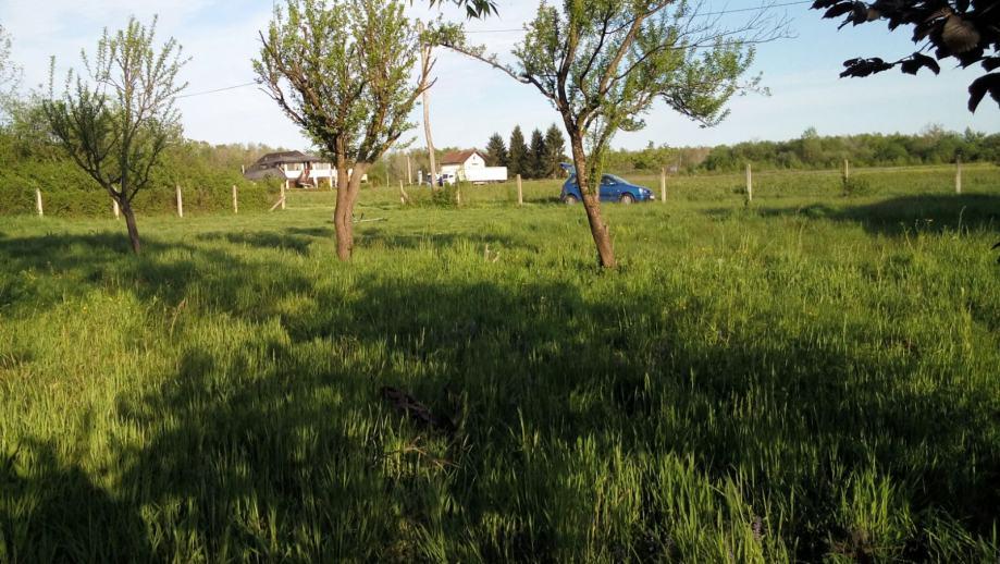 Građevinsko zemljište, Pisarovina, 1115 m2