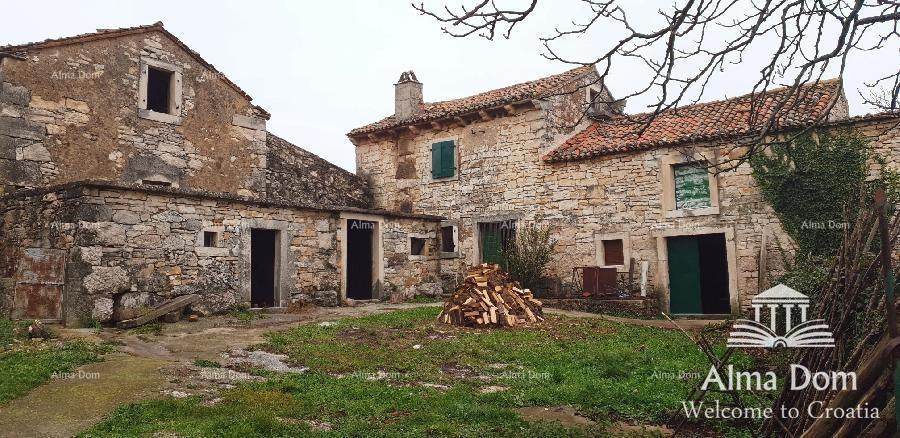 Kuća Stara istarska  kuća u Punteri. (prodaja)