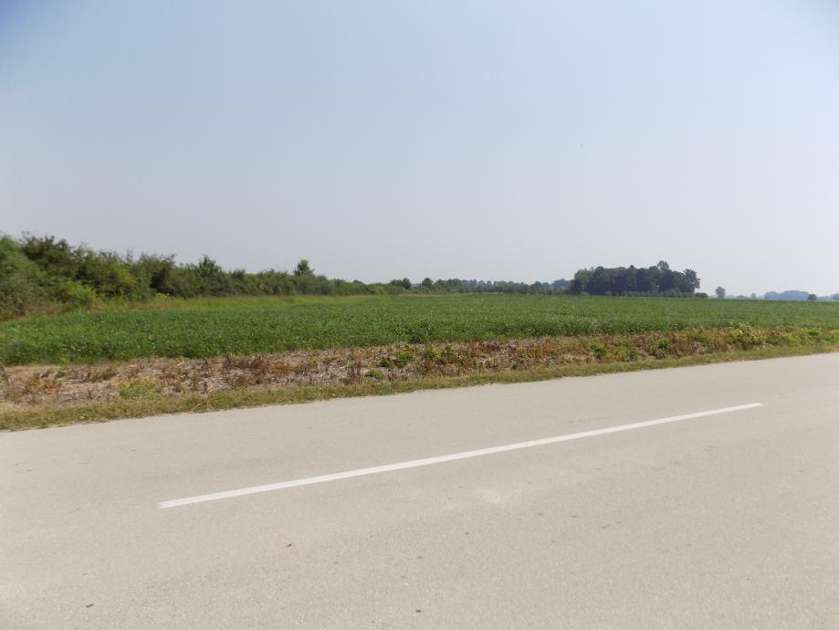 Poljoprivredno zemljište: Gunja, 7851 m2