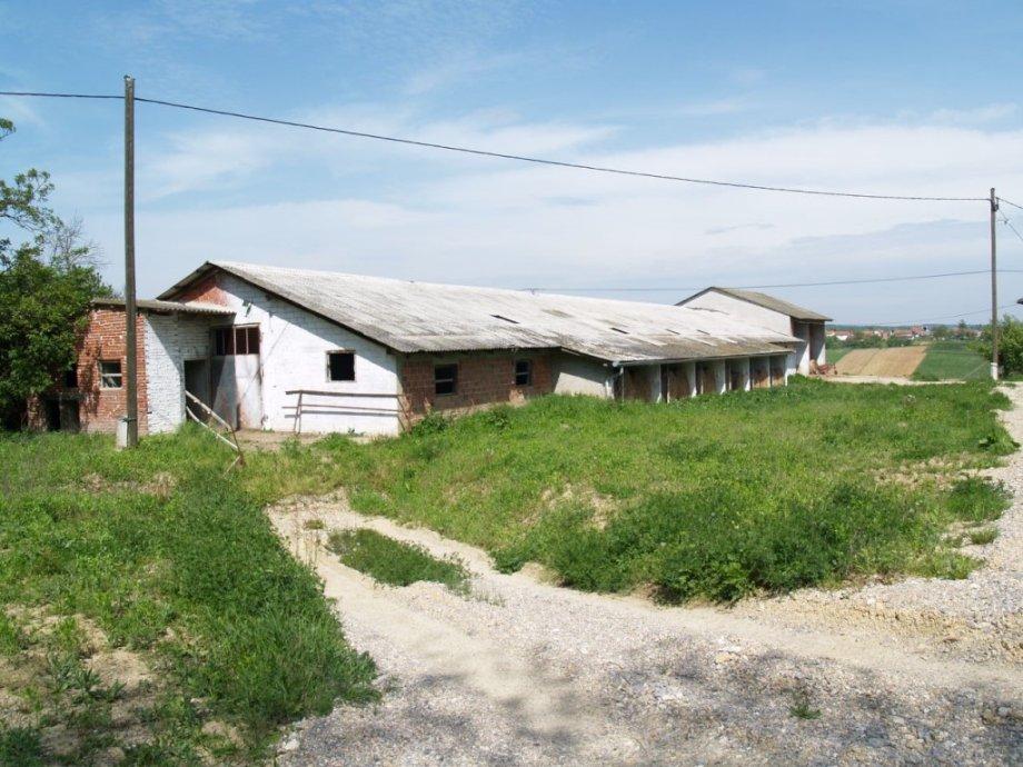 Poslovni prostor: Farma, tovilište svinja, Ivanec Križevački, 593.1 m2 (prodaja)