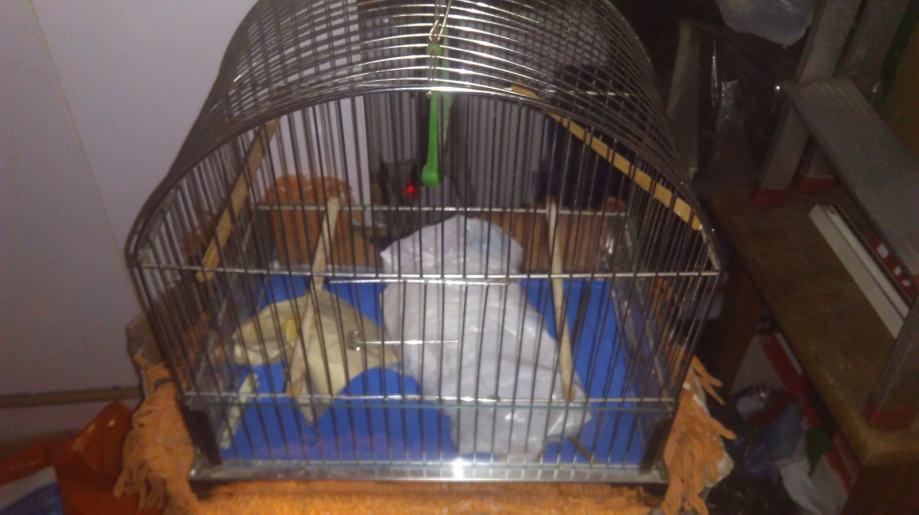 Krletke - kavezi za ptice