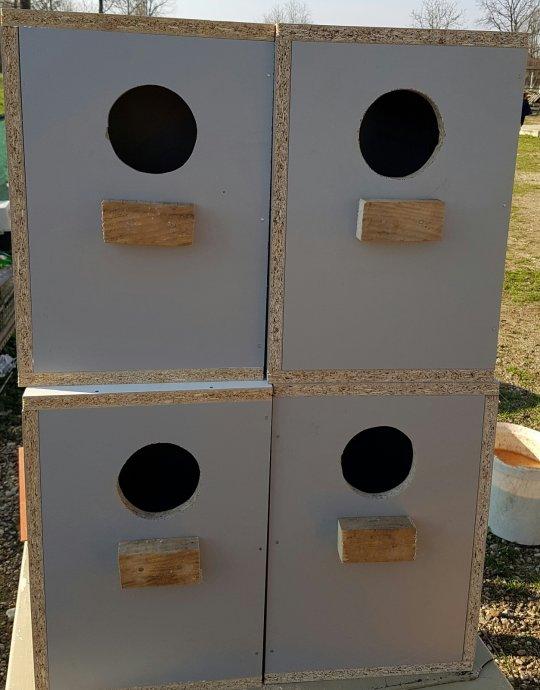 Kucice za parenje za srednje papagaje