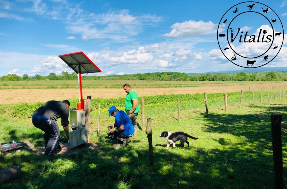 ✅ Električni pastir 1J + Solarni set - KOMPLET SVE NA JEDNOM MJESTU!!✅
