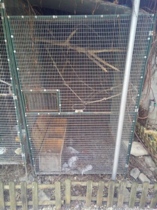 Kavezi za ptice veliki 1x1x2m