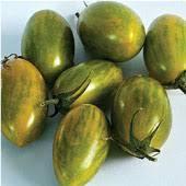 rajčica zeleni tigar, 10 SJEMENKI