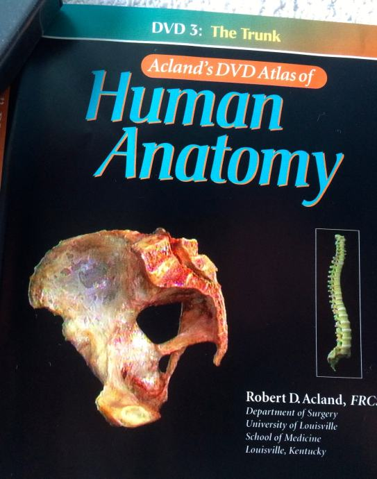 Aclands Dvd Atlas Of Human Anatomy 6 Dvd A