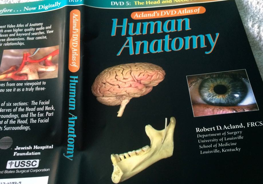 Acland Dvd Atlas Of Human Anatomy 8728282 Togelmayafo