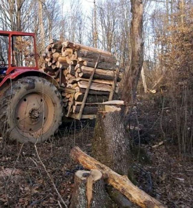 nosaljka za drva
