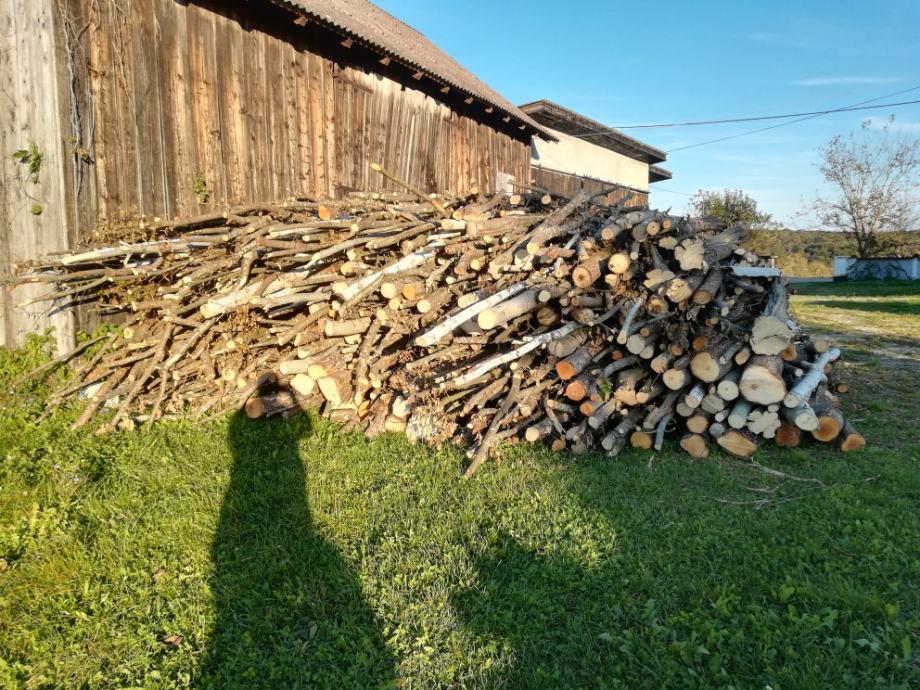 Drva za Ogrjev Prodajem 18,5metara 3800kn