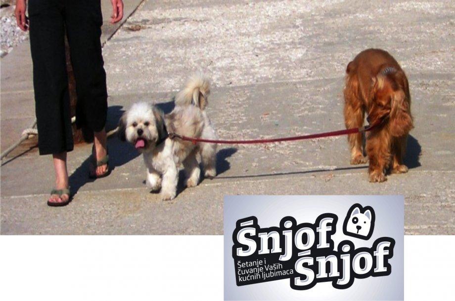 Čuvanje pasa, šetanje pasa i drugih  kućnih ljubimaca